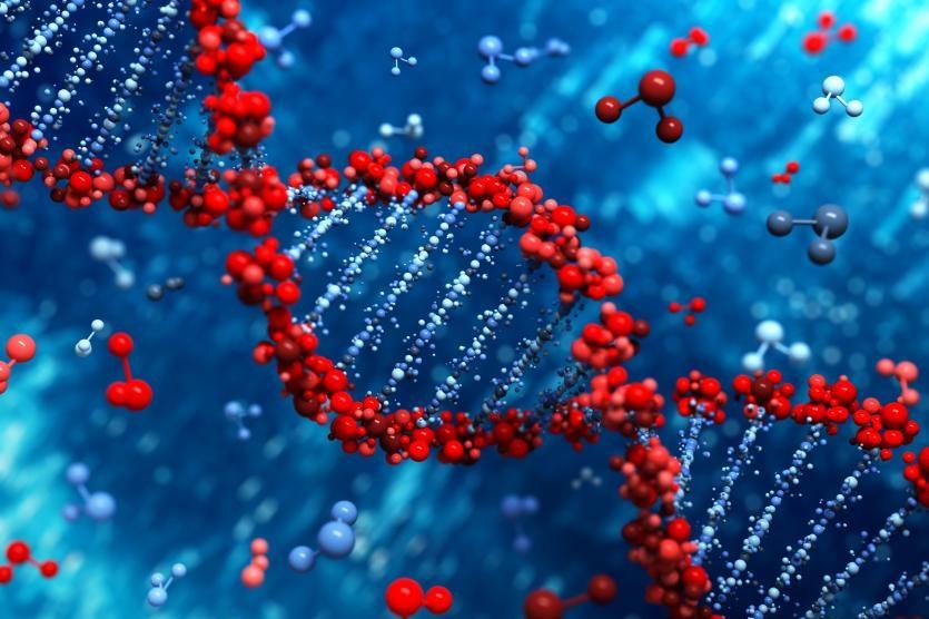 بررسی تنوع ژنتیکی ژنوتیپهای توت ایران با استفاده از خصوصیات مورفولوژیکی
