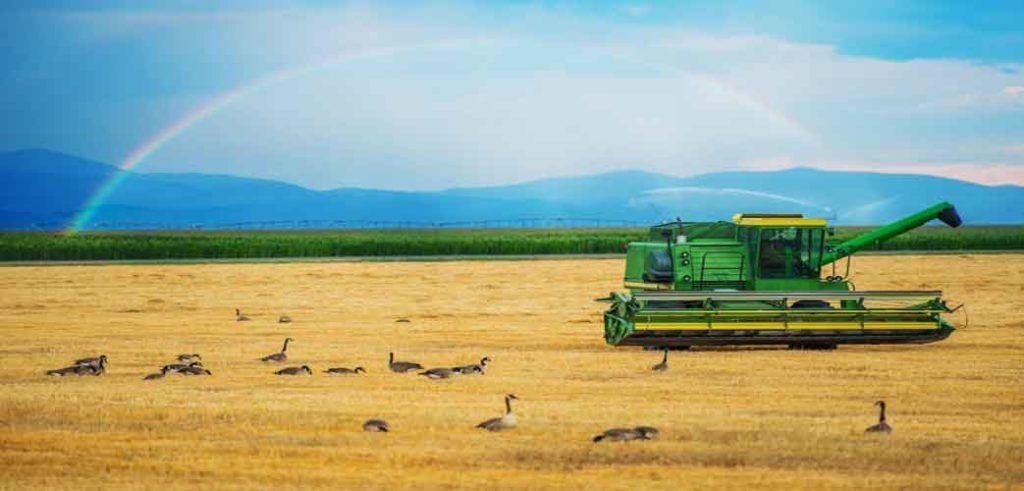 تولید کنندگان محصولات کشاورزی