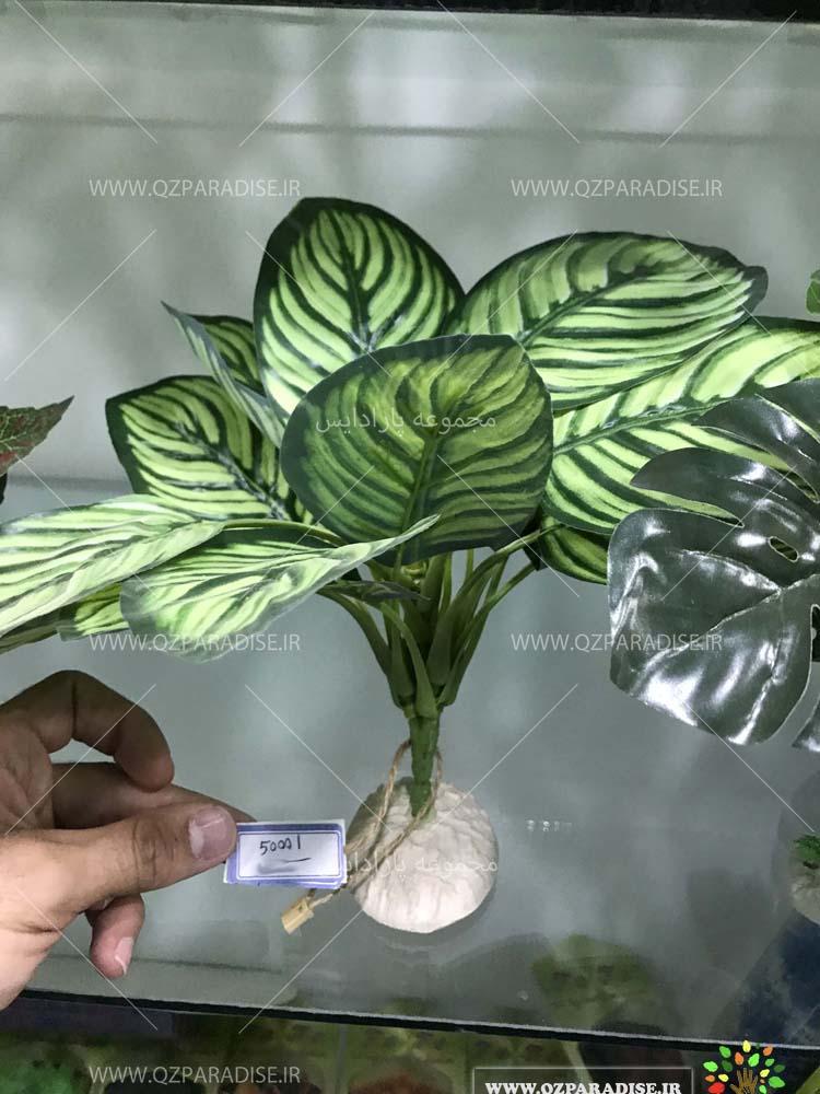 گیاه آکواریومی مصنوعی در تنوع رنگی مختلف و کیفیت عالی به صورت کلی در فروشگاه ملی پارادایس گل