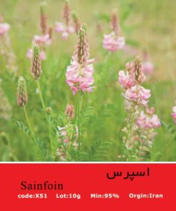 بذر گل اسپرس sainfoin