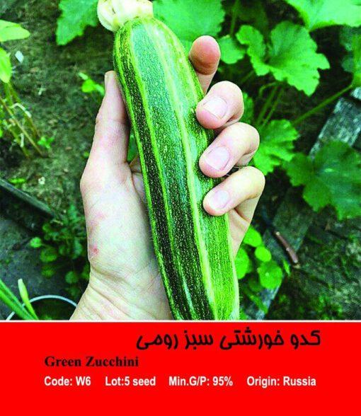 بذر کدو خورشتی سبز رومی Green Zucchini