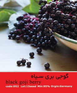 بذر گوجی بری سیاه Black Goji Berry