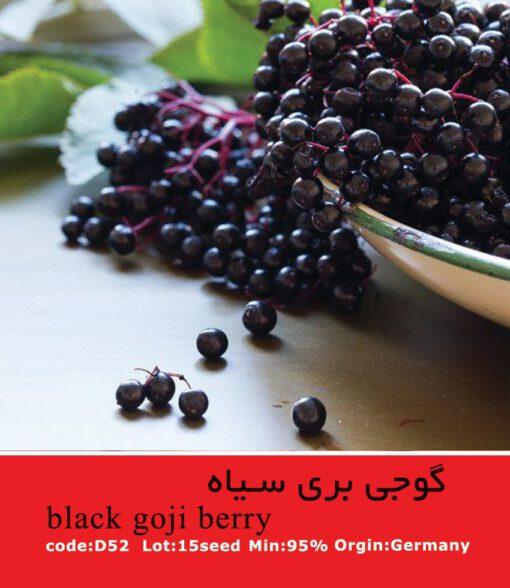 بذر گوجی بری سیاه Black Goji Berry