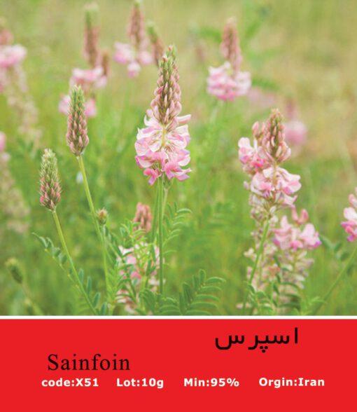 بذر گیاه اسپرس Sainfoin
