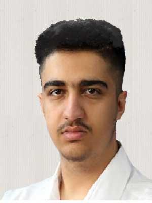 محمد حسین موسوی مشاور کسب و کار اینترنتی و اجرای سایت های مجازی اعضای مشاورین علمی زنجیره تامین بهشت