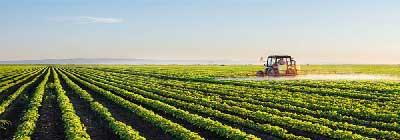 خدمات کشاورزی مقالات تخصصی در زمینه خدمات کشاورزی