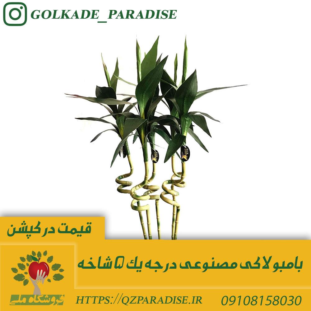 عکس 5 شاخه بامبو مصنوعی که قبل از ارسال در شبکه های اجتماعی داخل فروشگاه بارگذاری شده است