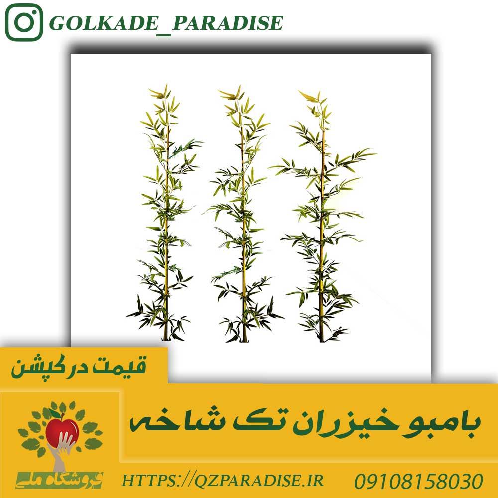 عکس گل بامبو مصنوعی  بامبو خیزران مصنوعی تک شاخه خرید بامبو کلی و جزئی