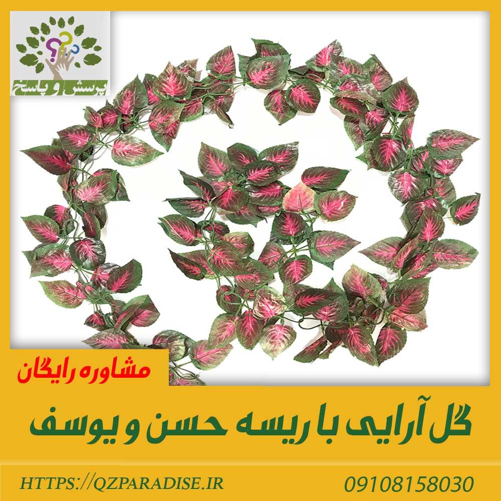ریسه مصنوعی حسن یوسف